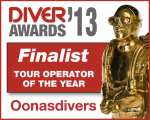 Diver Awards Finalist 2013